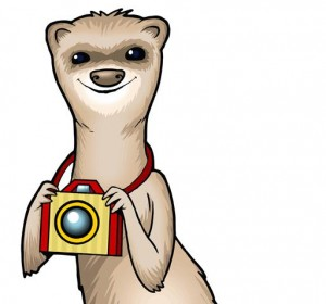 Make Friends with Foto Ferret on Facebook
